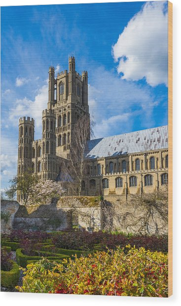 Ely Cathedral And Garden Wood Print