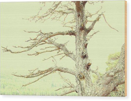 Embrace Wood Print