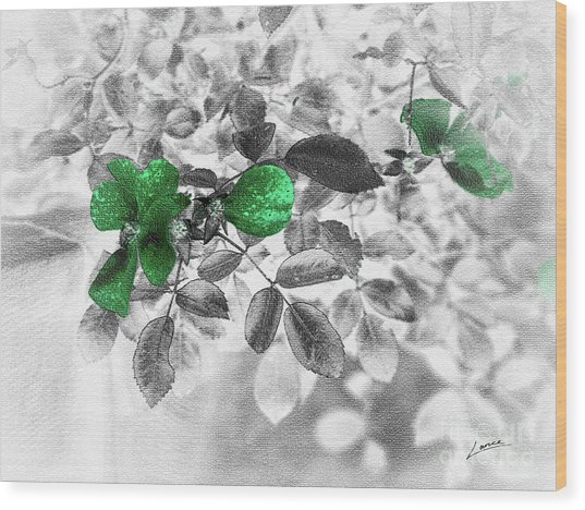 Emerald Green Of Ireland Wood Print