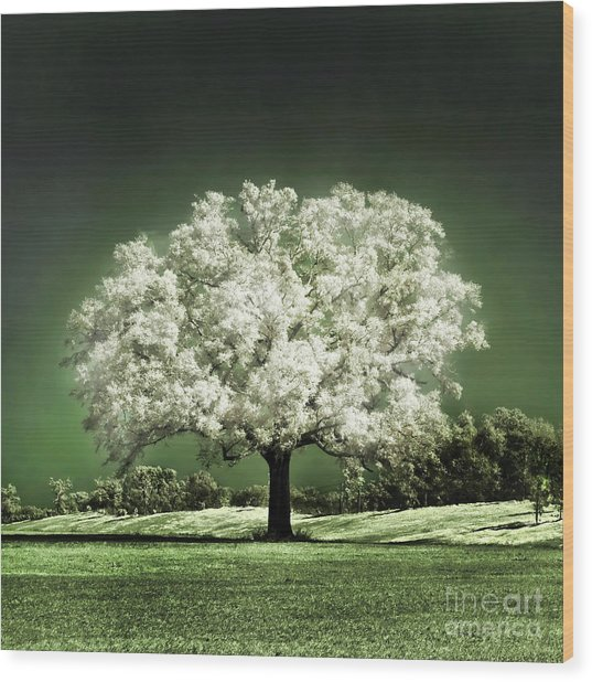 Emerald Meadow Square Wood Print