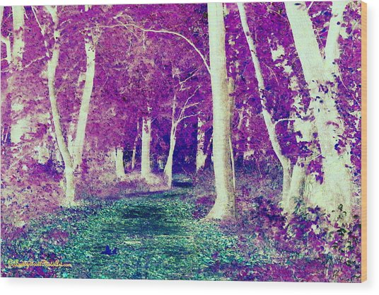Emerald Path Wood Print