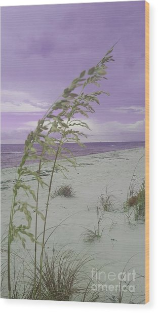 Emma Kate's Purple Beach Wood Print
