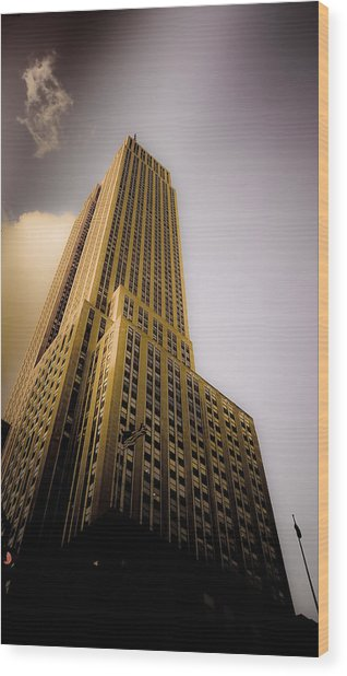 Empire State Building Wood Print by Patrick  Flynn
