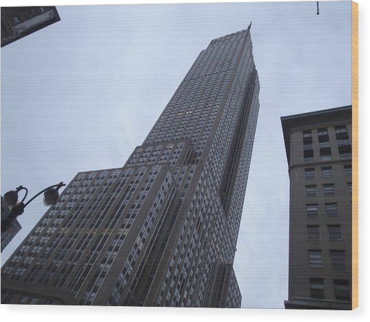 Empire State No 1 Wood Print by Dan Andersson