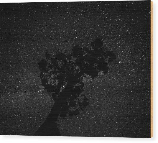 Empty Night Tree Wood Print