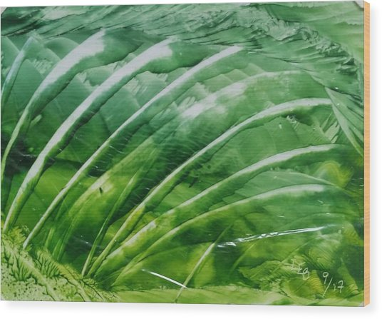 Encaustic Abstract Green Fan Foliage Wood Print
