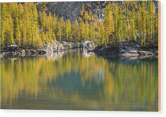 Enchanted Larches Wood Print