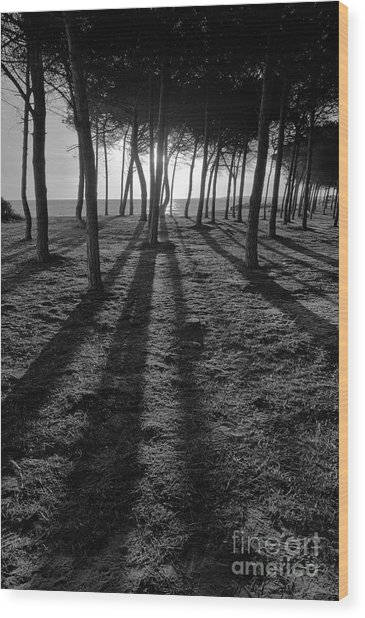 Enchanted Sunset In Monochrome Wood Print