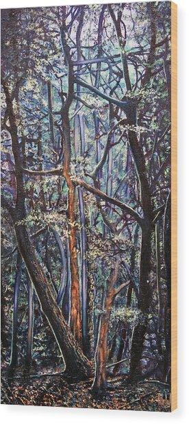 Enchanted Woods Wood Print