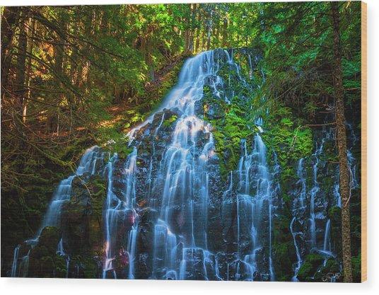 Enchanting Ramona Falls Wood Print