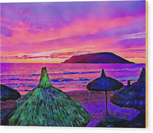 End Of The Beach Day In Mazatlan Wood Print