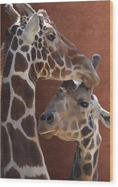 Endearing Giraffes Wood Print
