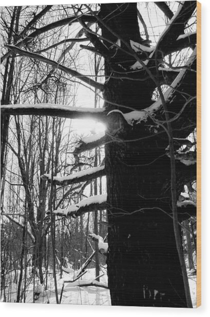 Endurance Wood Print by Douglas Pike