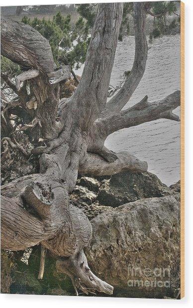 Endure Wood Print