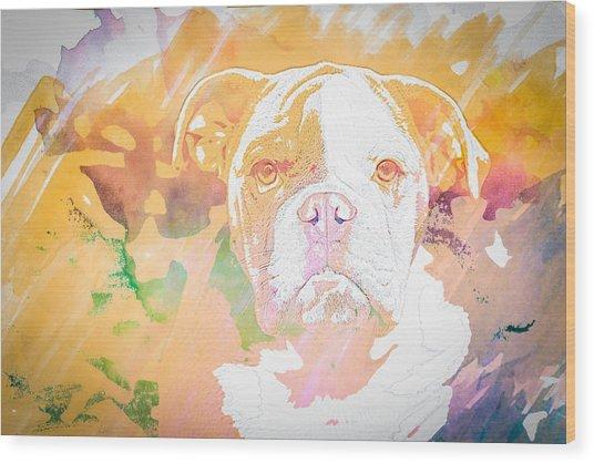 English Bulldog Wc Wood Print