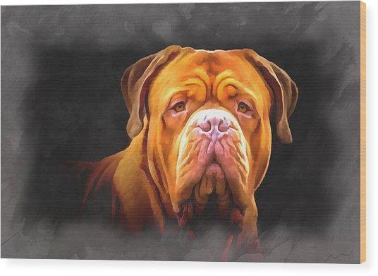 English Mastiff Wood Print
