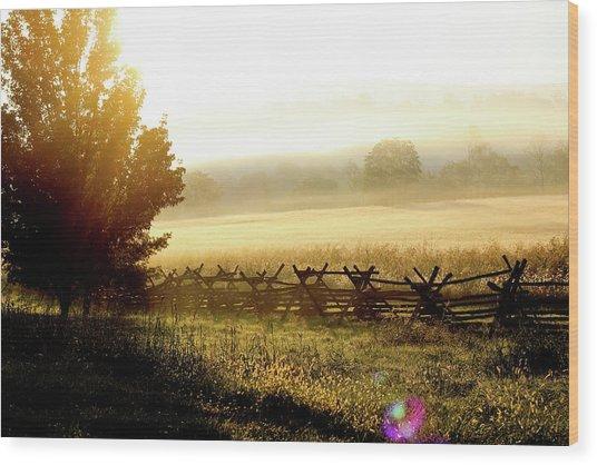 English Morning Wood Print