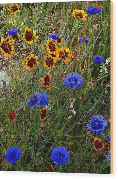 English Cottage Garden Flowers 4 Wood Print