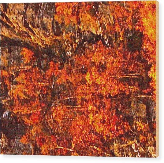 Enigma Orange Wood Print by Chris  Riley