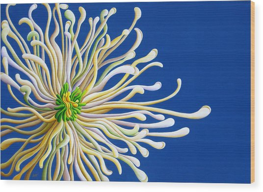 Entendulating Serene Blossom Wood Print