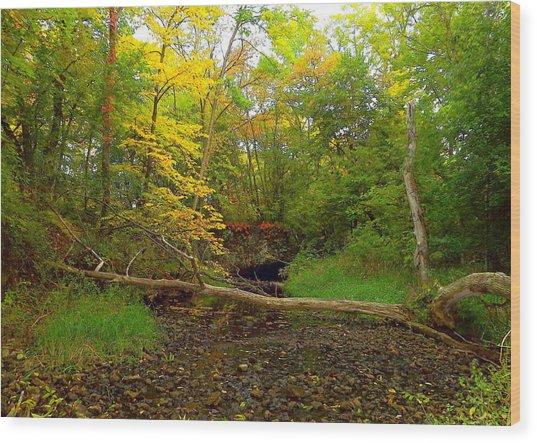 Enter Autumn Wood Print