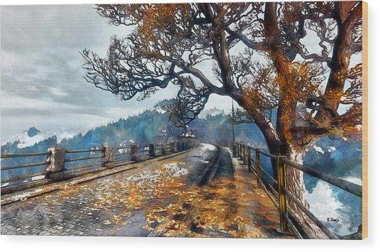 Entering Red Creek Valley Wood Print
