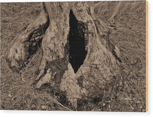 Entrance To... Wood Print