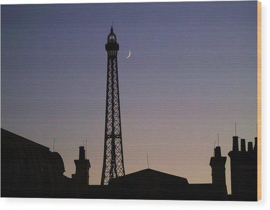 Epcot France Night Wood Print