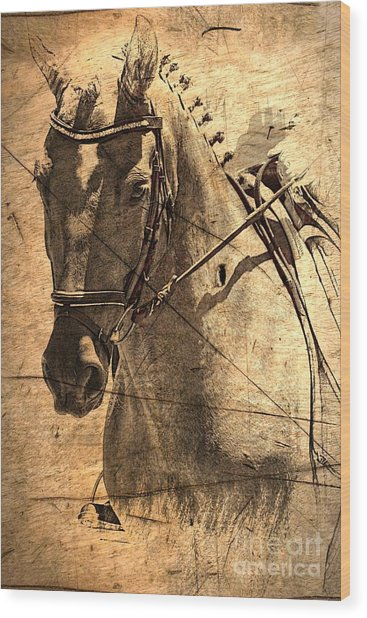 Equestrian Wood Print