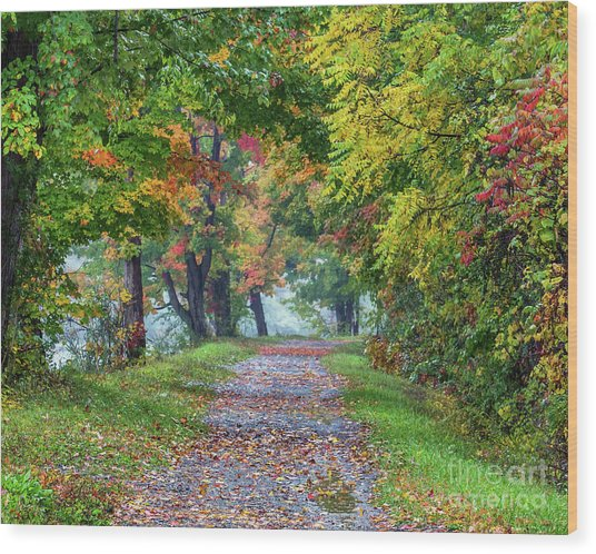 Erie Canal In Fall Wood Print