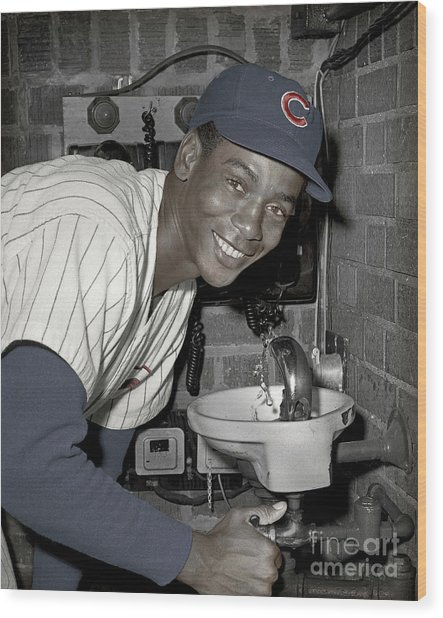 Ernie Banks At Cubs Water Fountain Wood Print