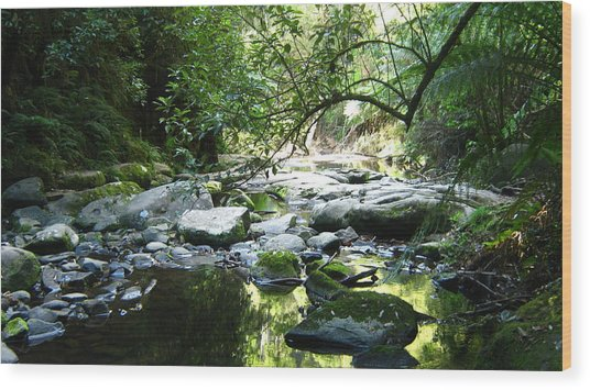 Erskine River Wood Print