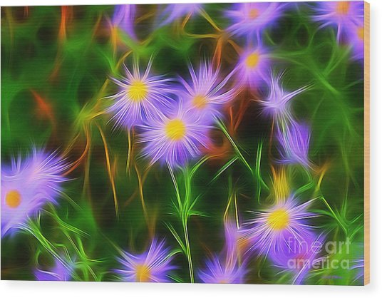 Essence Of Asters Wood Print