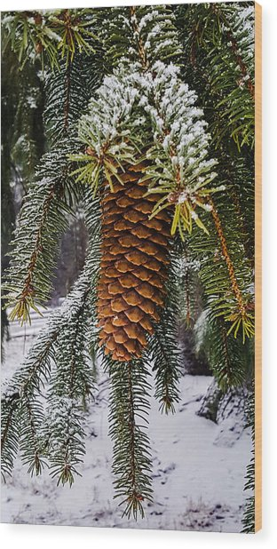 Essence Of Winter  Wood Print