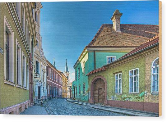 Esztergom Pastels Wood Print