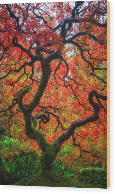 Ethereal Tree Alive Wood Print