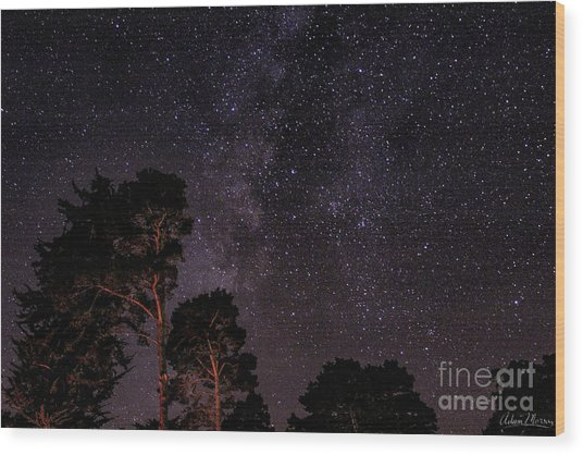 Eucalyptus Galaxy Wood Print