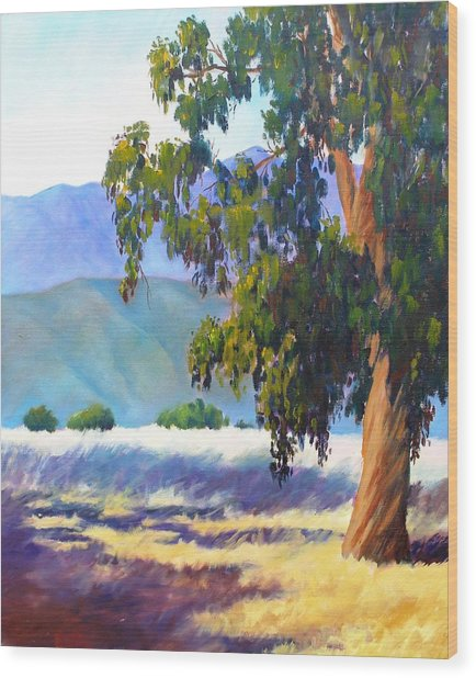 Eucalyptus On The Bluffs Wood Print by Dorothy Nalls