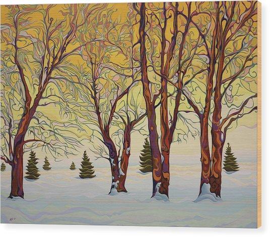 Euphoric Treequility Wood Print