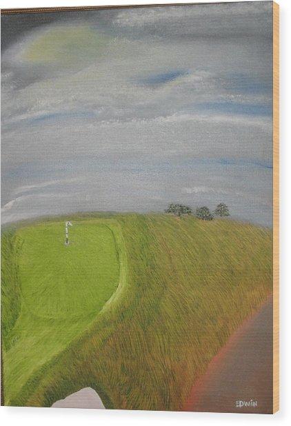 European Golf Tour Wood Print by Edwin Long