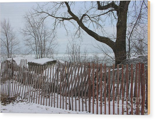 Evanston Winter Wood Print