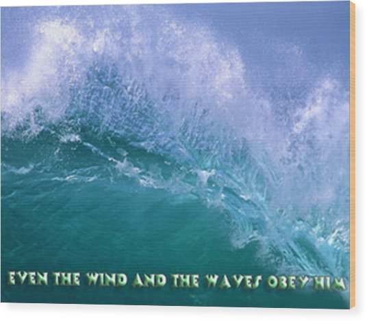 Even The Wind  Wood Print by Philip McDonald