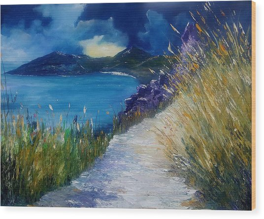 Evening At Keem Bay Co Mayo Wood Print