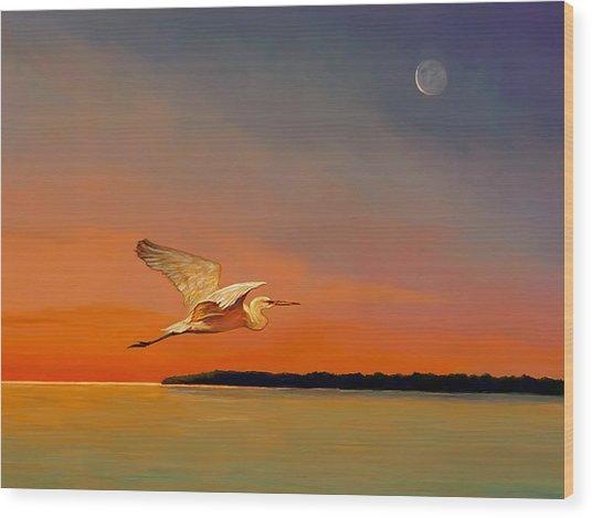 Evening Flight Wood Print