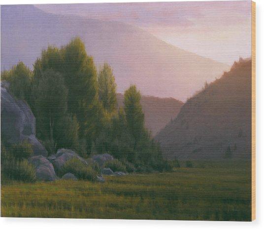 Evening Grace Wood Print by Joe Mancuso