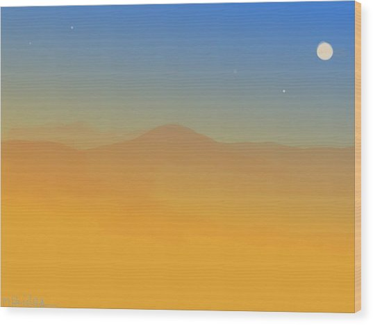 Evening Haze Wood Print by Margot Paisley