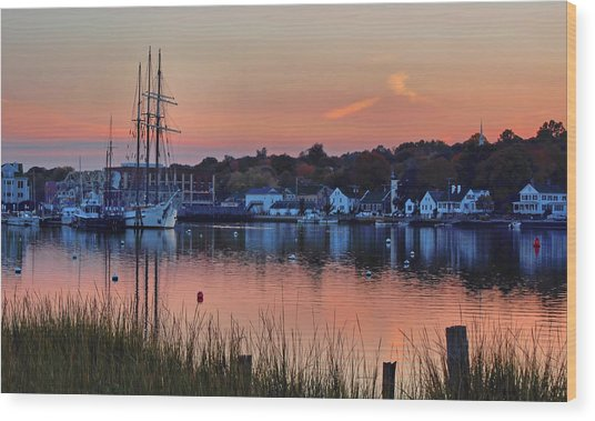 Evening Light Over Mystic Wood Print