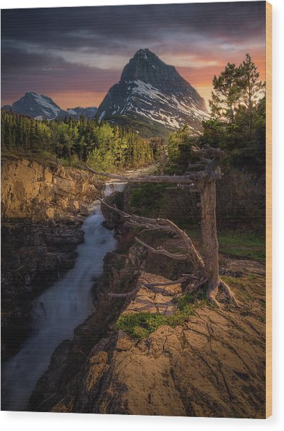 Evening Light / Swiftcurrent Falls, Glacier National Park  Wood Print