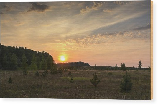 Wood Print featuring the photograph Evening Meadow. Horytsya, 2014. by Andriy Maykovskyi