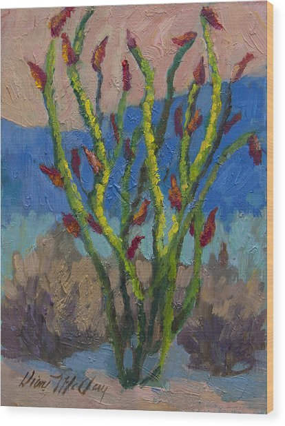 Evening Ocotillo Wood Print